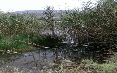 Διενέργεια Δειγματοληψιών και Μετρήσεων Περιβαλλοντικών Ρύπων σε αέρα, ύδατα και έδαφος